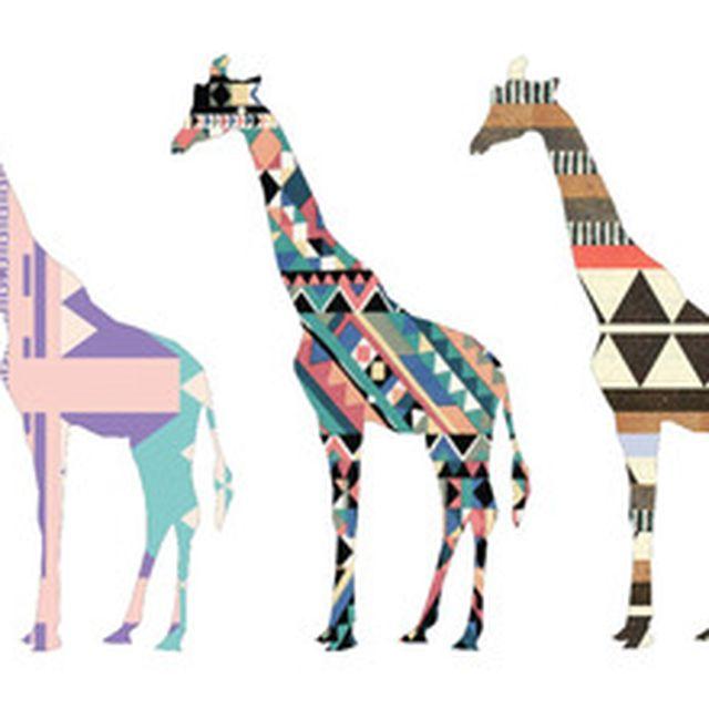 image: Giraffes by paulapzlz