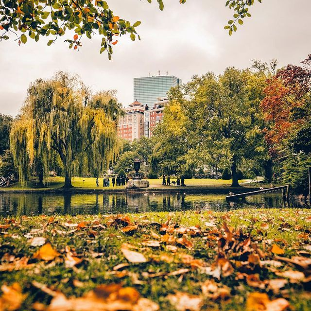 image: ?Boston Common in the fall ?, Boston is home even when I'm not here, and it is my everyday ??? • #whpmyeveryday ••••••••••••••••••• ••••••••••••• •• • • • • • • • • • #Sonyalpha #alphacollective #ig_color  #moodygrams  #boston by yayitsyanan