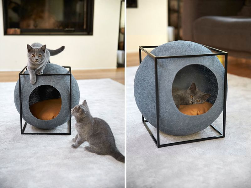 image: Cat Cocoons by wastedyouth