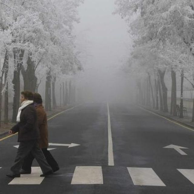 image: Fog by nachozamora