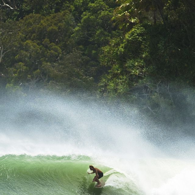 image: Green Dreams by GuillePedreiro