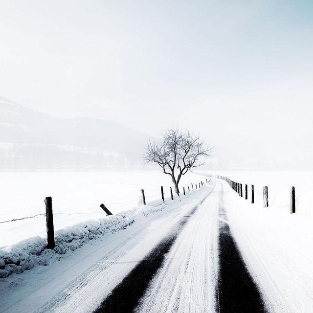 image: Roads to follow ~ by plndm