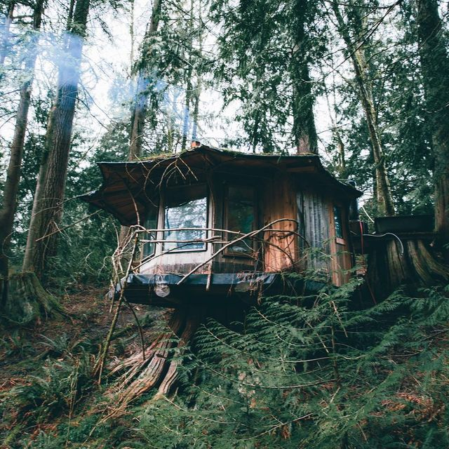 image: Secluded paradise, hidden in the Pacific Northwest. I can't wait to return to this place in the near... by lostintheforrest