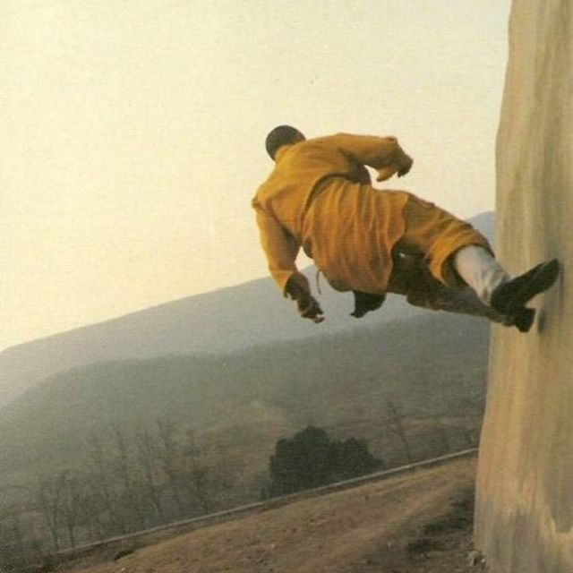 image: Shaolin equilibrium by skynet