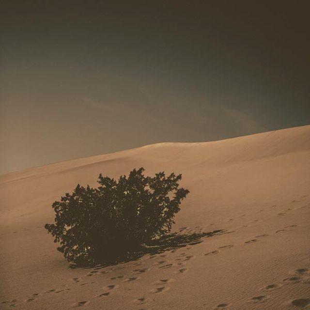 image: Pedro del Corro by woodenlime