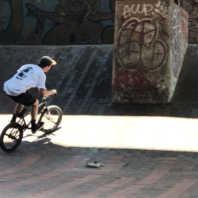 image: Brooklyn Banks🤤 @federalbikes by brunohoffmann