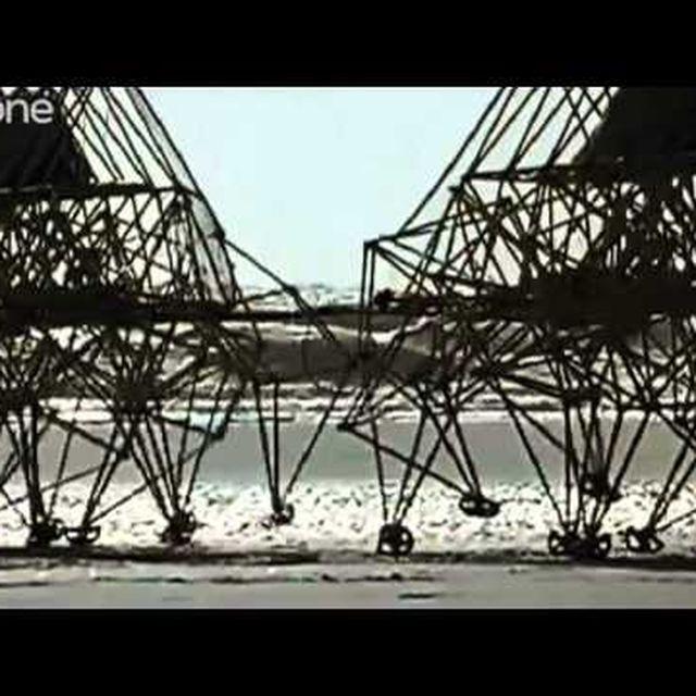 video: Theo Jansen's Strandbeests by martanicolas