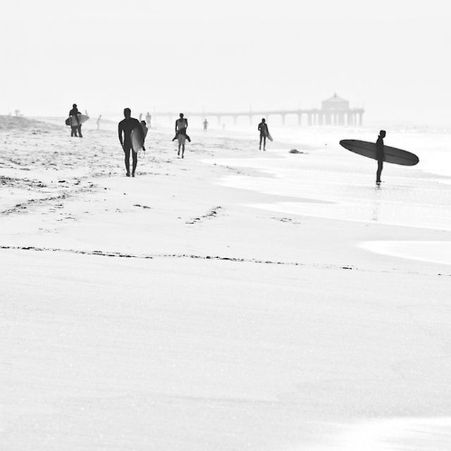 image: Surfs Up by danikid