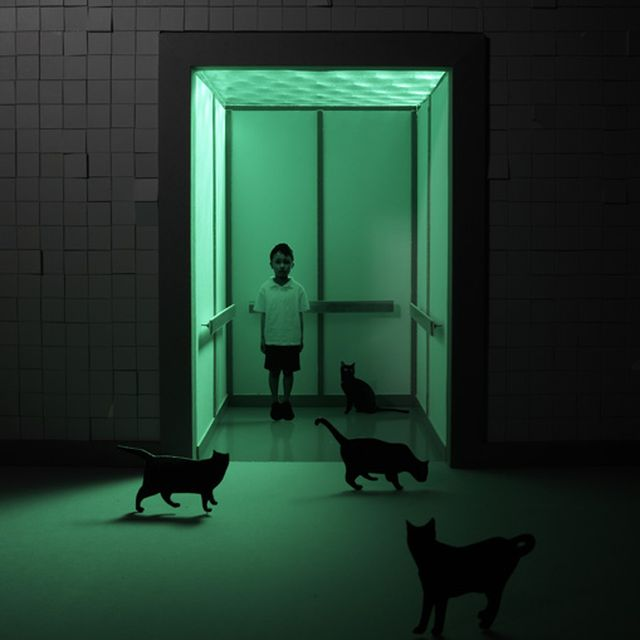 image: Green + Cats by xellif