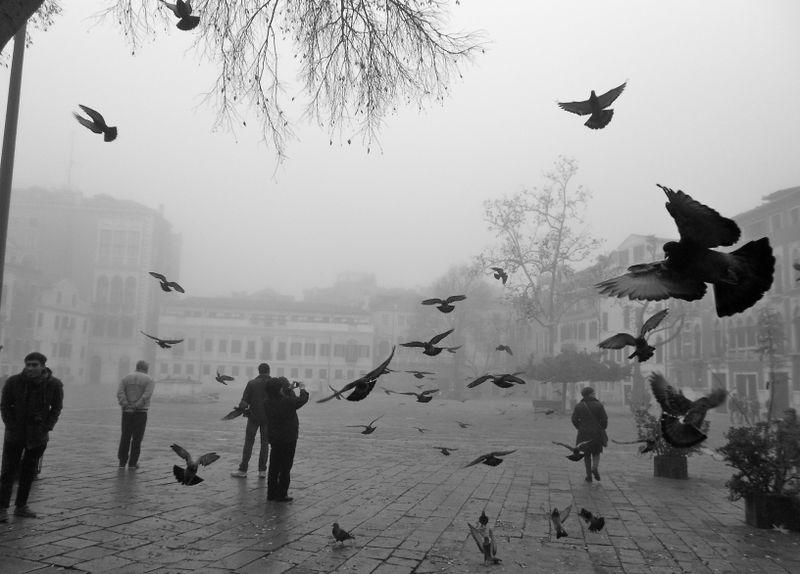 image: Venezia by asenvae