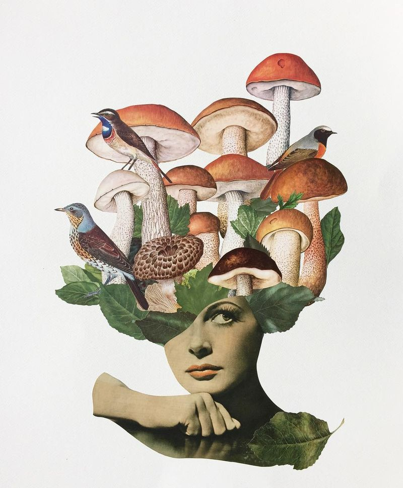 image: Time to go hunting some mushrooms. / Analog collage on...#collageart  #collage_guild #cutandpaste #analogcollage #minimalistart #mushrooms #mushroomsociety #mushroomhead #collagecollectiveco #handcutpaper #taidekollaasi  #riikkafransila #analogcollage by vintageart_originals