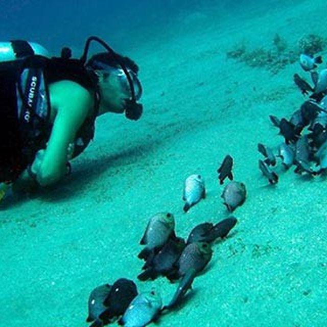 image: Jordan Tours Packages  -Best Jordan shore excursion by ObeidatOlivia