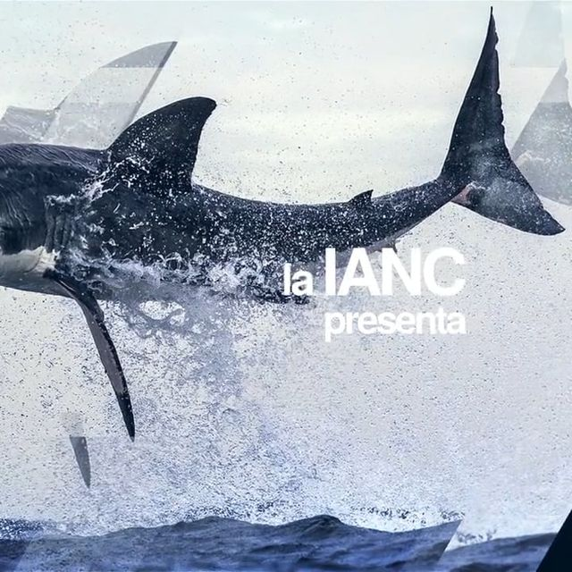 video: CONGRESO IANC by marcosvandulken