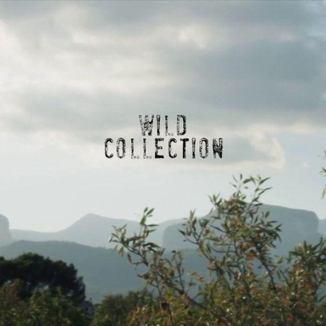 video: WILD by eqixclothing