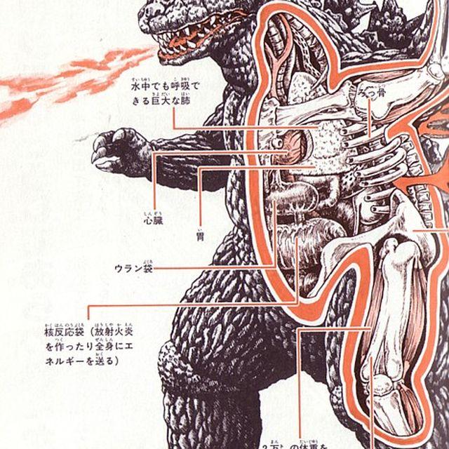 image: monster anatomy by borja-sainz-562