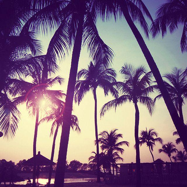 music: Janita - Thats How Life Goes (NeguimBeats Remix) by codec