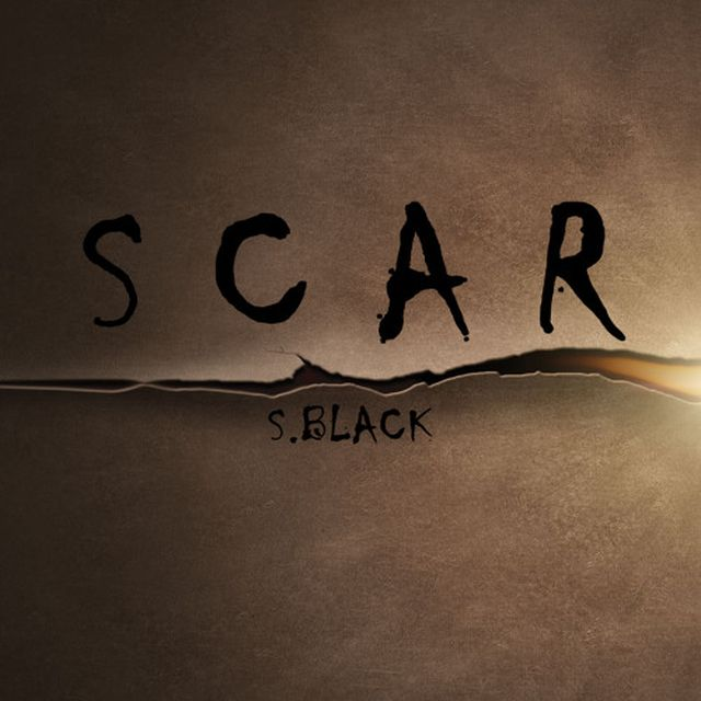 music: Scar (Original Mix) by S.Black (Official) by nekonegro