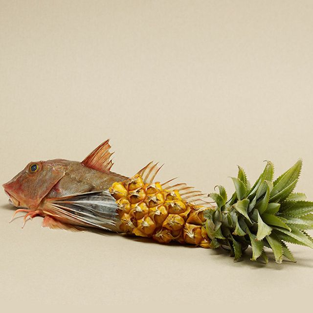 image: Food photography by Rene Mesman by wackynavyblue