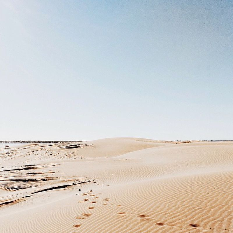 image: In the desert... by anna_salvadoraro
