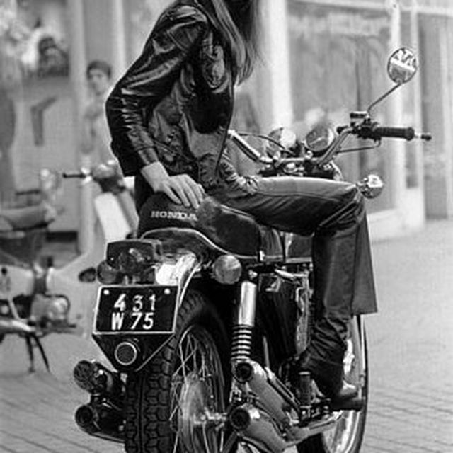 image: ride on by regih