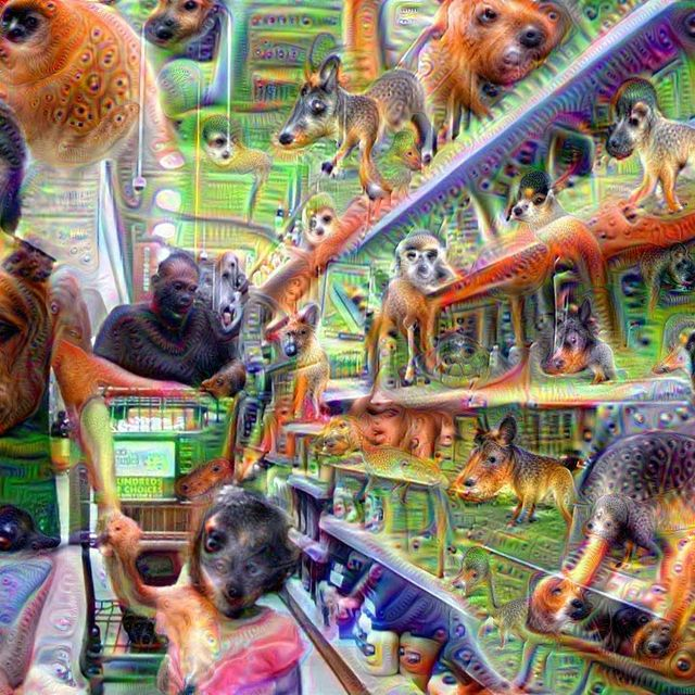 video: Grocery Trip using Google Deep Dream by amped