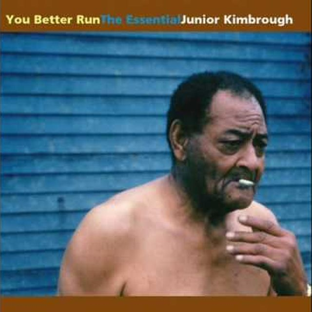 video: Junior Kimbrough Meet Me in the City by ligula
