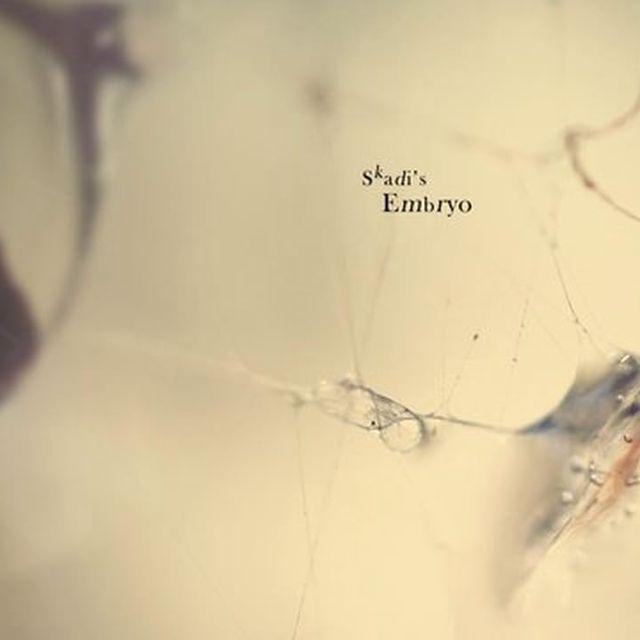 video: MACRO KINGDOM by keirux