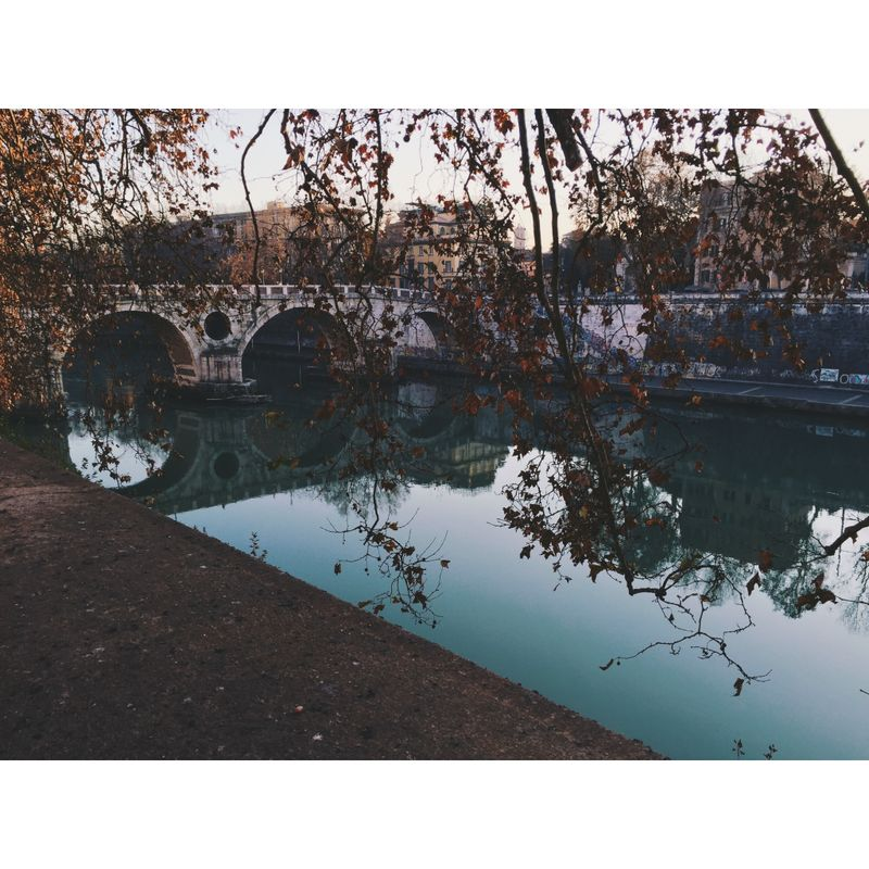 image: A day in Rome by annagr