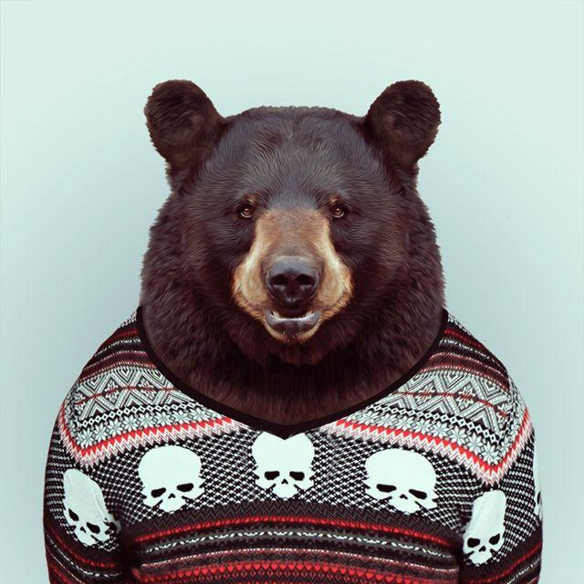 image: bear by gabriel-lisboa-9
