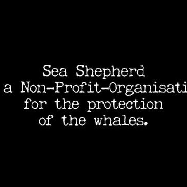 video: SEA SHEPHERD by july-leski