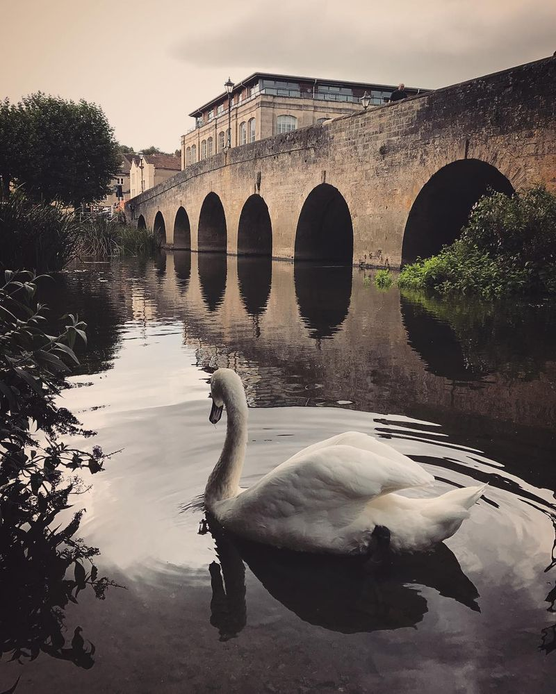 image: On the river at Bradford on Avon by mikekus