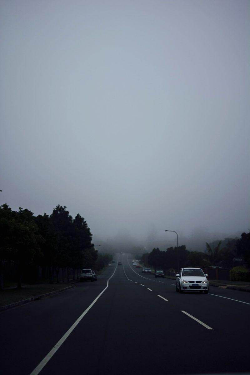 image: Foggy by myles
