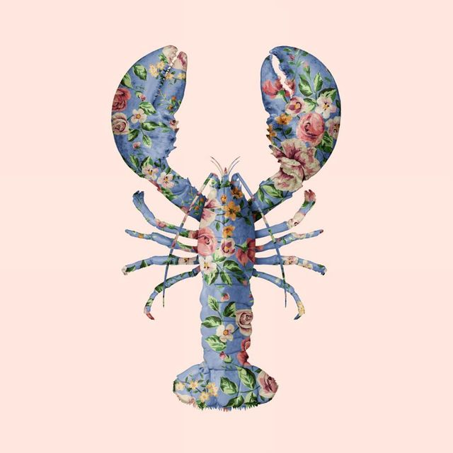 image: Floral Lobster ?? Tag you Lovester here ? •••#lobster #floral #instaanimal #pattern #flowers #flowerstagram #animalart #photoshop #paulfuentes by paulfuentes_design
