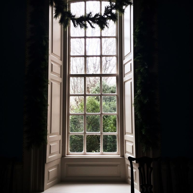 image: look outside by macarenaobregon