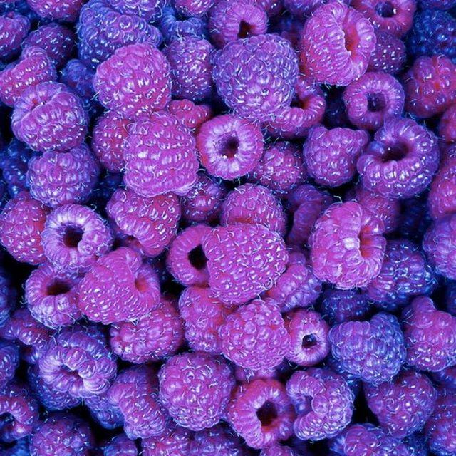 image: Sweet purple blackberries by pit