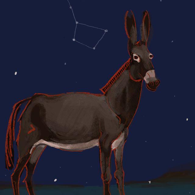image: Spacial mule by luisrico