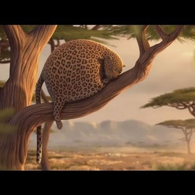 video: What if wild animals ate fast food by sermonroy