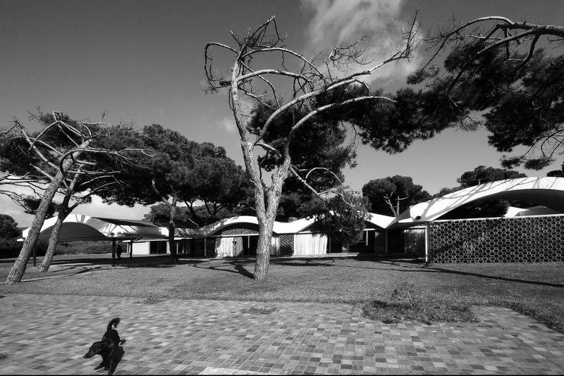 image: La Ricarda, Bonet Castellana by martinvazquez