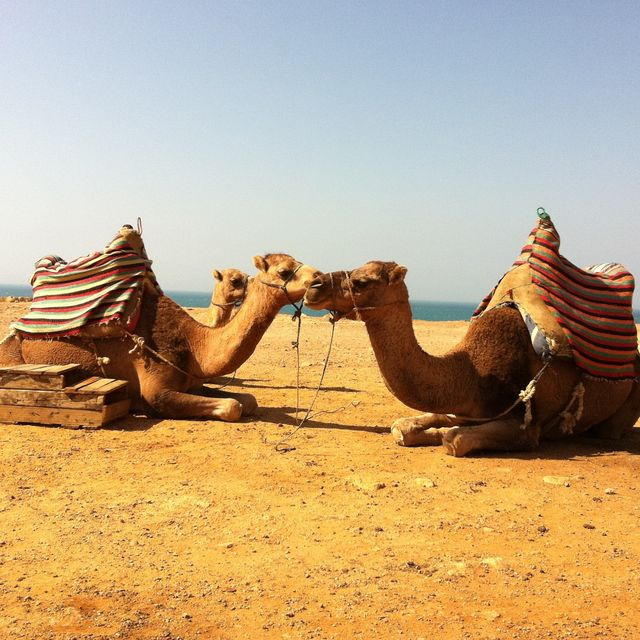 image: morocco by luly