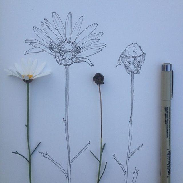 image: FLOWER POWER by art_seeker