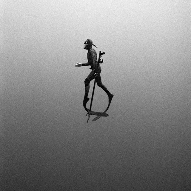 image: diver by patrick