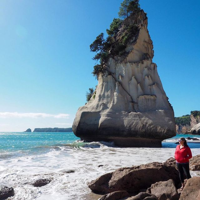 image: New Zealand has no shortage of beautiful beaches and memorable coastlines - in fact the vast majority of New Zealanders live no more than a couple hours from the ocean. ?This photo was taken at Cathedral Cove, a famous beach on the Coromandel Peninsula. by dangerousbiz