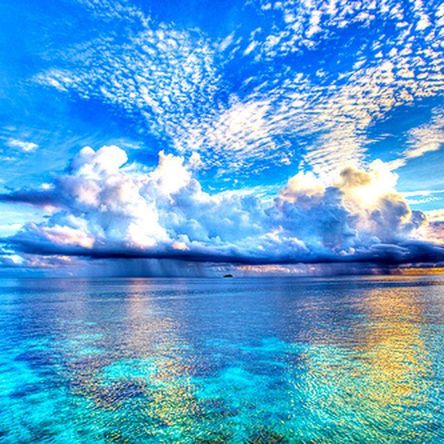 image: dream. by juli