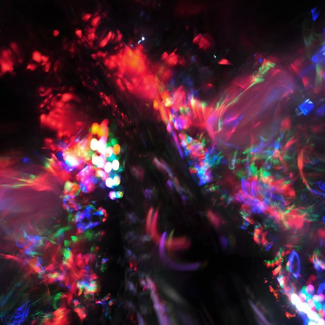 image: Light Jungle by alberto_moya