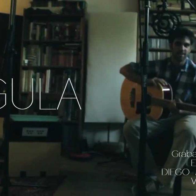 """video: LIGULA """"Missing bird"""" Acústico by ligula"""