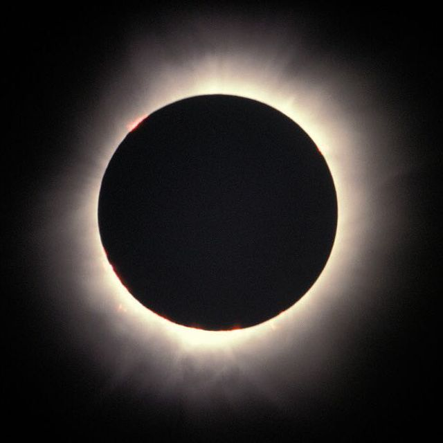 image: Total Eclipse of Light  by astronomypicturesdaily