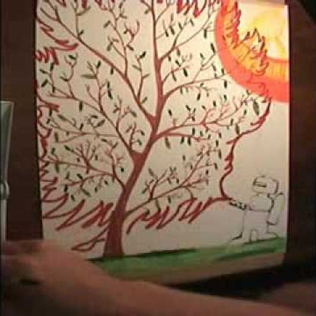 video: Wilco - California Stars by ligula