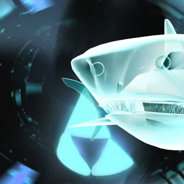 video: Fu****g Shark Attack by skynet