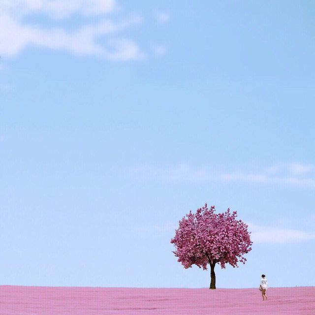 image: Spring  by mercemillan