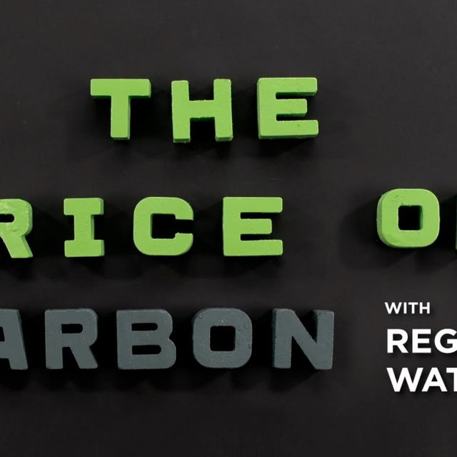video: The Price of Carbon by Luli